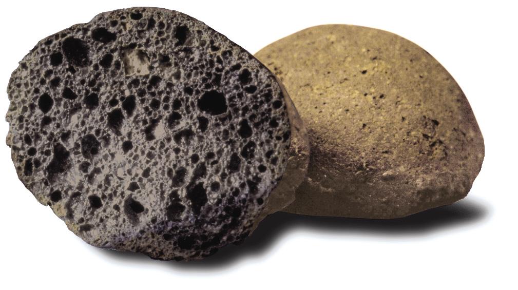 Leca nødder